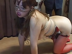 Sadism & masochism leash walking steamy  on massive bum