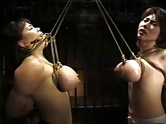 asian breast restrain bondage
