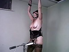 Wifey Bound N Vibrated