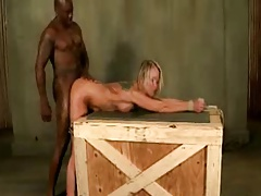 Tied up white bitchs ass fucked rigid by a ebony big dick