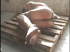 dual ball-gagged and  ropework