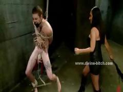 beautifull black-haired dominatrix teaching male gimp the manners in bdsm  romp