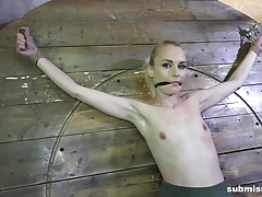 Submissed.com  Roxy Lee lashed vibrated and dildo'd